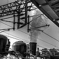 Train At Miaoli Station by Dewa Wirabuwana