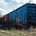 Train Boxcars by Ms Judi