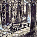 Train In The Redwoods by Unknown