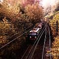 Train by Justyna JBJart