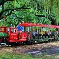 Train - New Orleans City Park by Deborah Lacoste