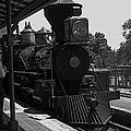 Train Ride Magic Kingdom Black And White by Thomas Woolworth
