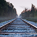 Train Tracks To Nowhere by Patrick Shupert