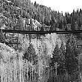 Train Trestle 4 by Kevin Bone