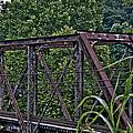 Train Trestle by Chauncy Holmes