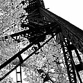 Train Trestle In The Woods 2.0 by Michelle Calkins