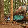 Train Wreck Canvas Among The Trees by Adam Jewell