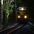 Rails Through The Wilderness by David Lee Thompson