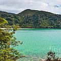 Tranquil Bay In Abel Tasman Np In New Zealand by Stephan Pietzko