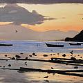 Tranquil Dawn by Glenn Beasley