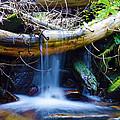 Tranquil Falls by Gary Mosman