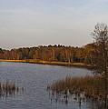 Tranquil Lake by Maj Seda