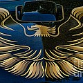 Trans Am Eagle by Paul Ward