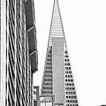 Trans America Building by Karyn R. Millet
