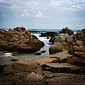 Transcend - Monterey, California by Melanie Alexandra Price