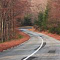 Transfagarasan Road Carpathian Mountains Romania  by Ivan Pendjakov