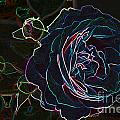 Transparent Rose by Mike Flake