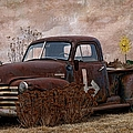 Transportation - Rusted Chevrolet 3100 Pickup by Liane Wright