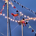 Trapeze Blur by Dan Sproul