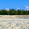 Trapper Creek And Mount Mckinley, Alaska by Panoramic Images