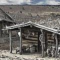 Trapper Dan's Log Cabins by David Kehrli