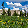 Trappers Lake Meadow by Jeff Stoddart