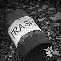 Trash Can by Randall Nyhof