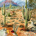 Treasures Of The Desert by Marilyn Smith