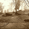 Tree And Steps At Devils Den - Gettysburg by Jan W Faul