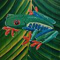 Tree Frog Koi by Deda Happel