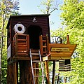 Tree House Boat 2 by Sherman Perry