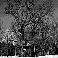 Tree House In Black And White by William Tasker