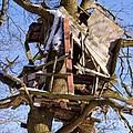 Tree Hut by Lutz Baar