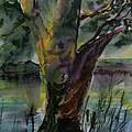 Tree In A Dream by Paul Rowe