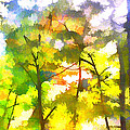 Tree Leaves by Frank Bright