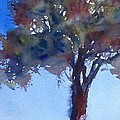 Tree Of Color by Gail Heffron