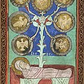 Tree Of Jesse, 12th Century by British Library