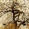 Tree Of Life  by Ann Powell