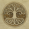 Tree Of Life by Jason Gianfriddo