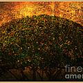 Tree Of Life by Susanne Van Hulst