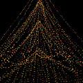 Tree Of Lights by Christi Kraft