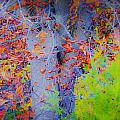 Tree Of Many Colors by KJ DePace