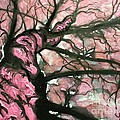 Tree Of Pink by Jonni Lavertu