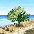 Tree On The Beach by Veronica Minozzi