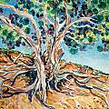 Tree Roots by Bonnie Follett