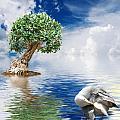 Tree Seagull And Sea by Antonio Scarpi