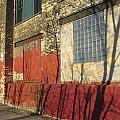 Tree Shadow On Brick 2 by Anita Burgermeister