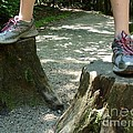 Tree Stump Stilts by Kerri Mortenson