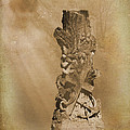 Tree Stump The Forgotten Series 05 by Cynthia Woods