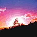 Tree Top Sunrise by James Kramer